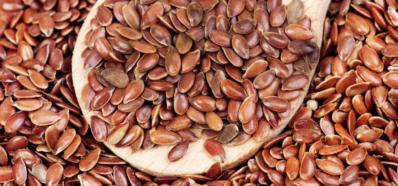 Flax Seeds For Weight Loss Flax Seeds Shop
